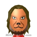 Lion Mii Image by sss